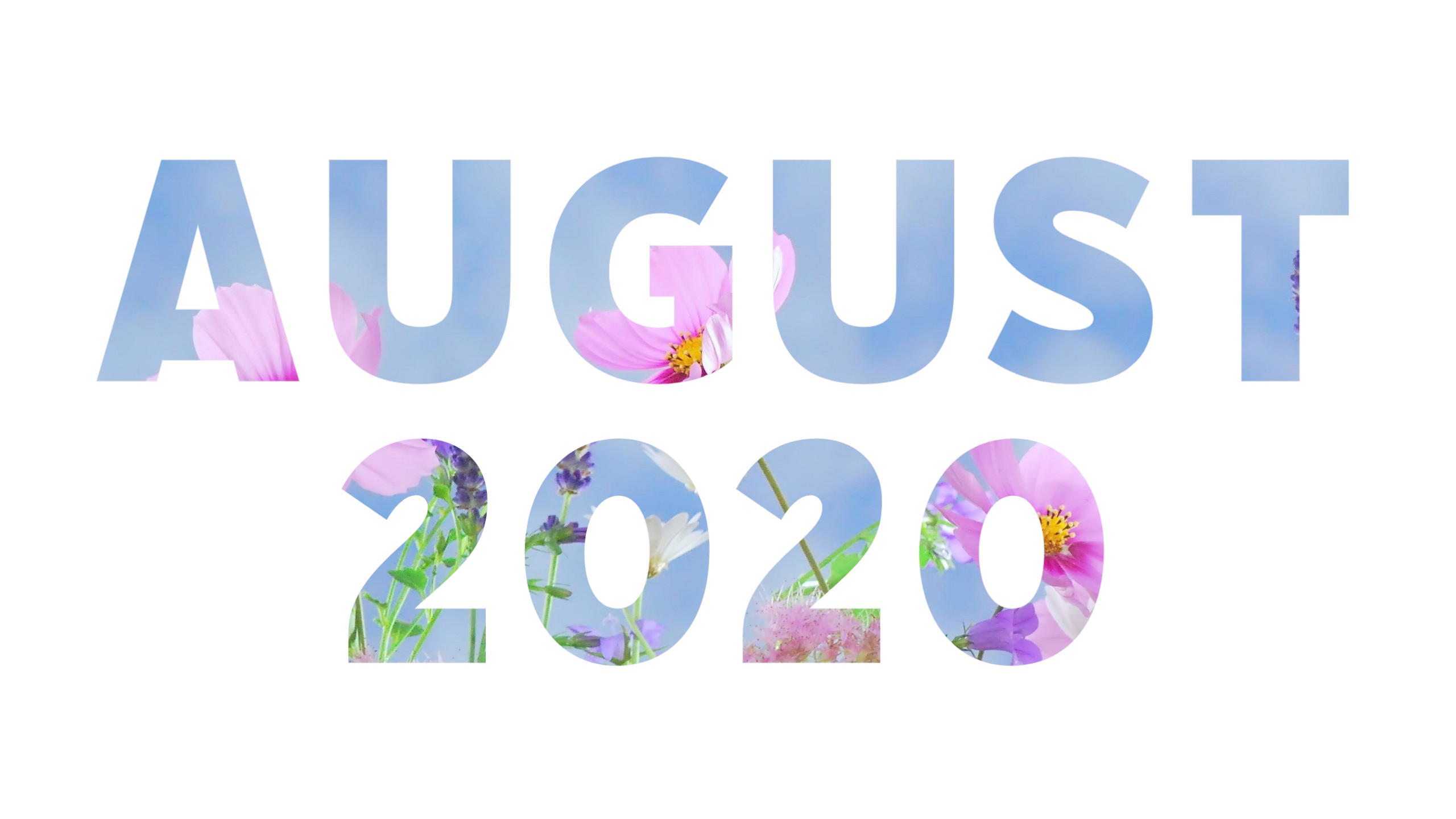 August2020_wide